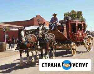 Курьерская доставка по Краю и Адыгея. Ежедневно Краснодар