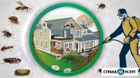 Уничтожение насекомых. Клопов. Тараканов. Комаров Уфа