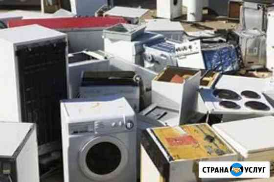 Газель утилизация Вывоз вынос мусора Димитровград