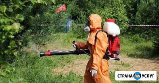 Обработка от клещей, комаров, блох Нефтекамск Нефтекамск