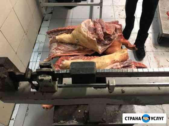 Свинина Балаково