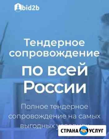 Тендерное сопровождение, подготовка заявок Краснодар