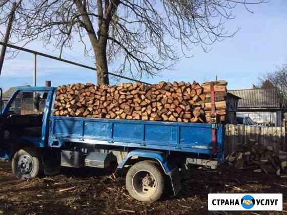 Дрова дуб Дондуковская