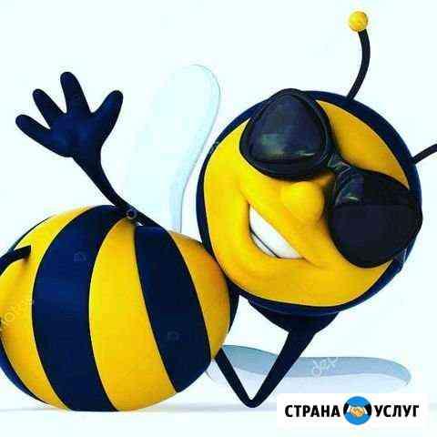 Мини садик Пчёлка на Ботанике Екатеринбург