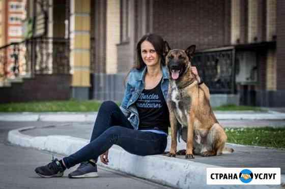 Дрессировка Новосибирск