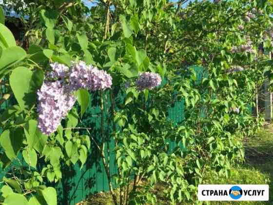 Забор профнастила Рязань