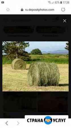 Продаю сено в рулонах Кумылженская