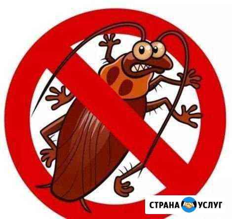 Дезинфекция Иркутск