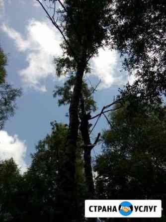 Спил, кронирование, обрезка деревьев Ставрополь