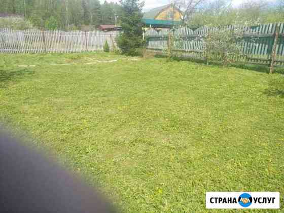 Покос травы Кольчугино