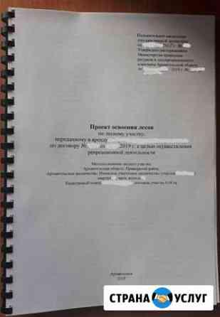 Оформление документов аренды лесного участка Архангельск