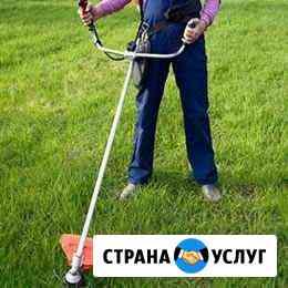 Покос травы,обрезка кустарников Иваново