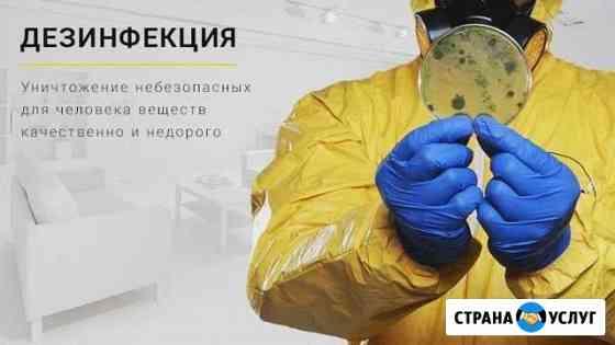 Дезинфекция - уничтожение насекомых, грызунов, бак Казань