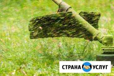 Покос травы, пилка деревьев и кустов, стрижка плющ Лабинск