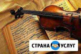 Обучение игре на скрипке Ростов-на-Дону