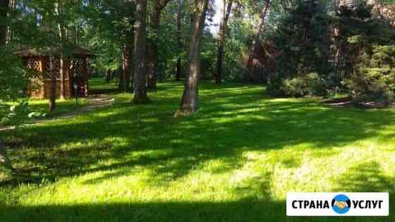 Благоустройство,озеленение,ландшафт Калининград