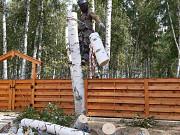 Спилить дерево, спил деревьев без автовышки Челябинск