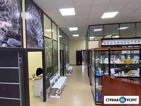Ветклиника Снежный Барс в Можайске предоставляет весь спектр ветеринарных услуг Можайск