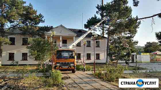 Спил деревьев Севастополь
