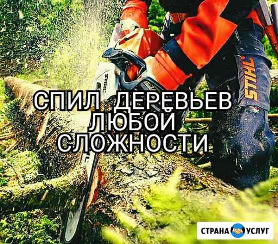 Спил деревьев любой сложности Ростов-на-Дону