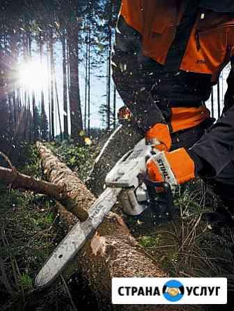 Cпил деревьев Ульяновск