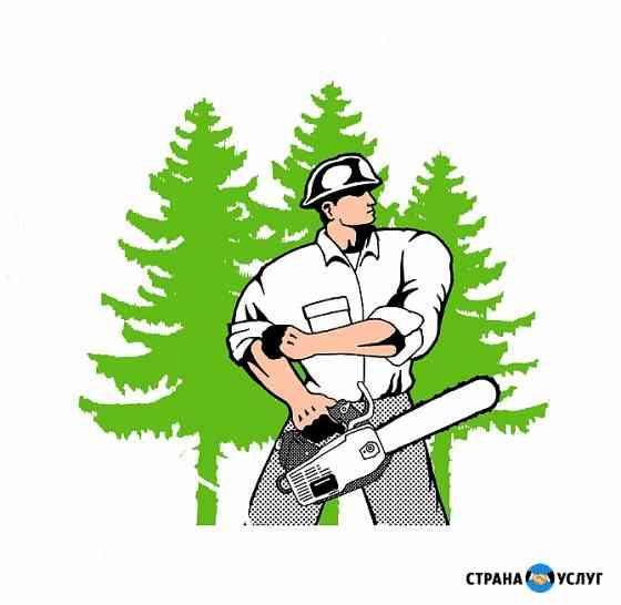 Спиливание Деревьев Пятигорск