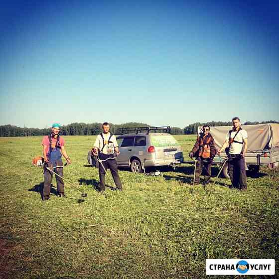 Покос травы. Скашивание газонов Новосибирск