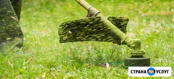 Покос травы, спил деревьев Белгород
